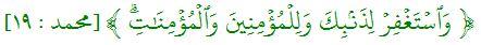محمد : ١٩